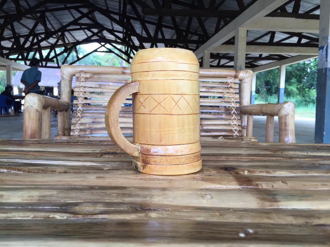 Environnement : un nouvel élan pour la filière bambou à Yangambi